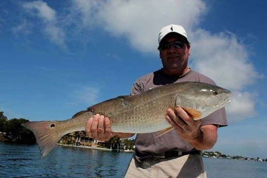 Anna maria fishing charter holmes beach fl omd men for Anna maria island fishing charters