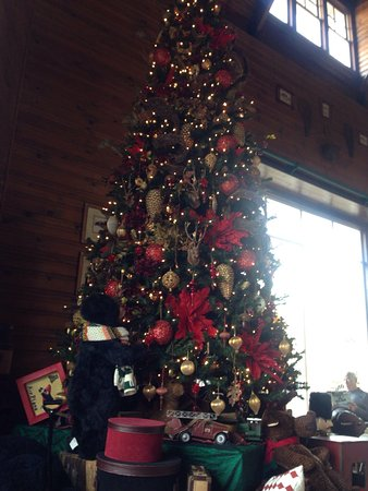 Young Harris, GA: Great Christmas Tree
