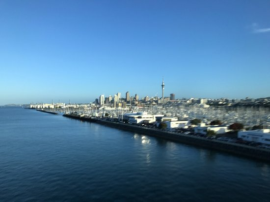 The Bus Tour - Auckland Sightseeing