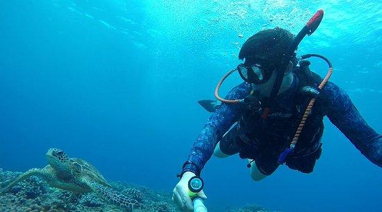 Scorpion Scuba Safaris : Selfie with a turtle while diving with Mike from Scorpion Scuba Safari