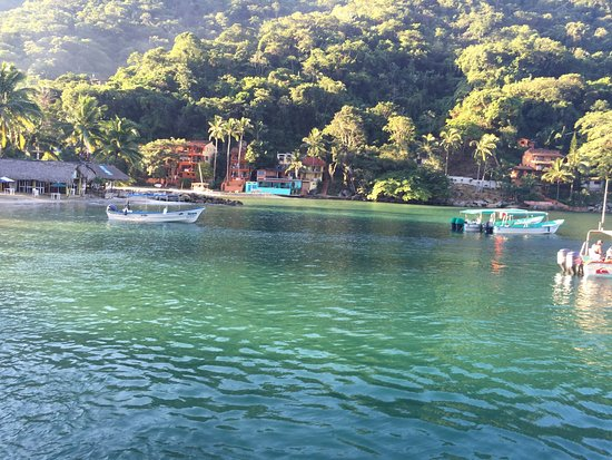 Pura Vida Wellness Retreat: Pure Vida and Yelapa