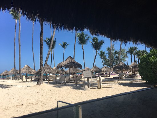 Paradisus Punta Cana: photo3.jpg
