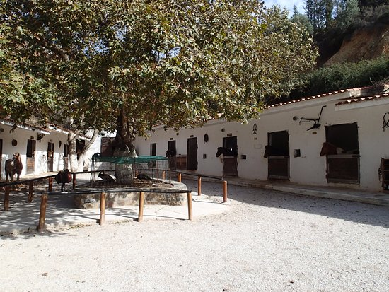 Deres Horse Riding Center : well-kept stables