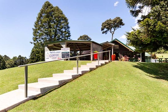 Bunya Mountains Accommodation: New and improved stairway to Poppies on the Hill Cafe