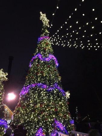 Busch Gardens Williamsburg: German Area Christmas Tree - German Area Christmas Tree - Picture Of Busch Gardens Williamsburg