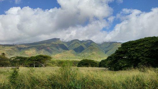 Kaunakakai, Hawái: 20161215_102950_HDR_large.jpg
