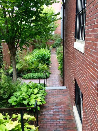 Wadsworth-Longfellow House: Garden