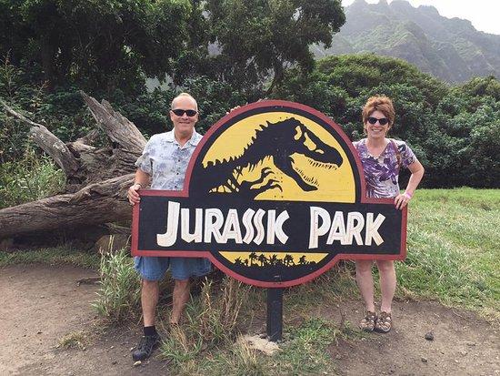 Kaneohe, ฮาวาย: Downed tree from Jurassic Park scene
