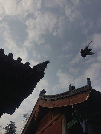 Dengfeng, จีน: photo6.jpg
