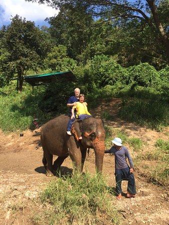 Saraphi, Thailand: IMG-20161201-WA0001_large.jpg