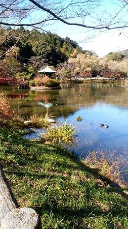 Shoden Pond