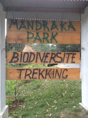 Mandraka Park