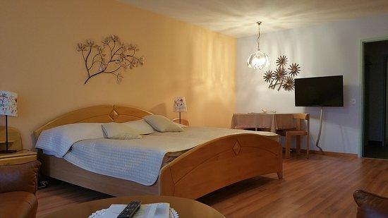 Morel, Schweiz: Large superior room 105