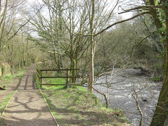 New Mills, UK: Beside the River Sett