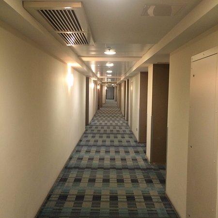 Holiday Inn St. Petersburg Moskovskiye Vorota: Длинные коридоры