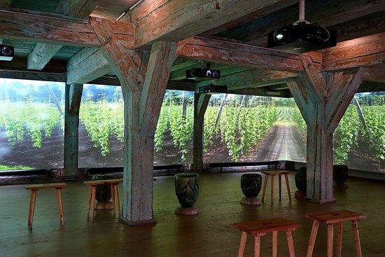 Spalt, Tyskland: Im Panoramafilm auf 270 Grad fühlt man sich mittendrin im Hopfengarten.