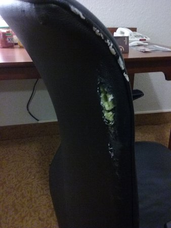 Country Inn & Suites By Carlson, Georgetown: Office Chair Torn Up