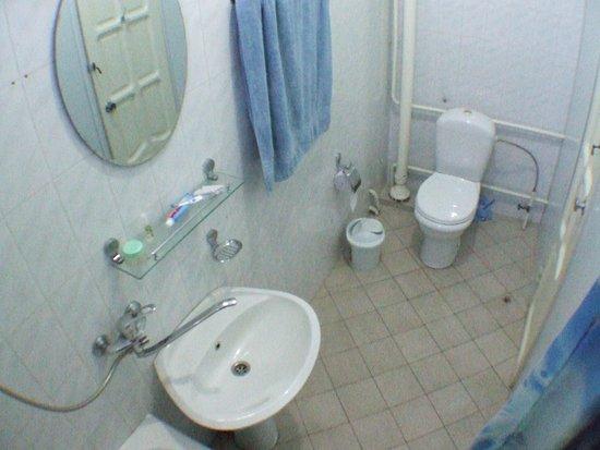 Gulnara Guesthouse : Bathroom