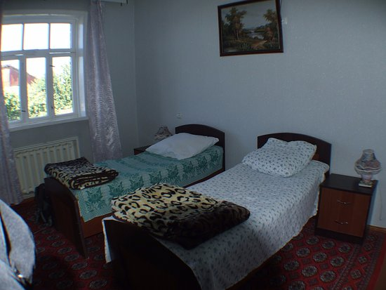 Gulnara Guesthouse: Room and window