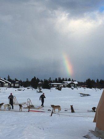 Sjusjoen, Norvège : photo0.jpg