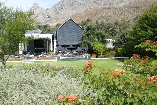 Catharina's Restaurant at Steenberg: restaurant