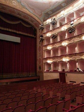 Teatro Comunale: Platea e palcoscenico