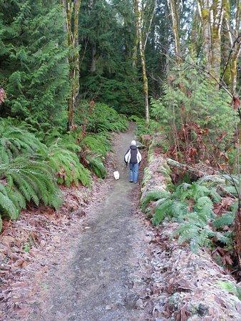Ladysmith, Canada: Hiking the Holland Creek Trail with my dog