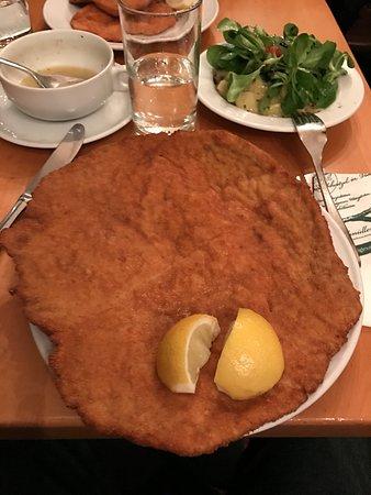 Big schnitzel