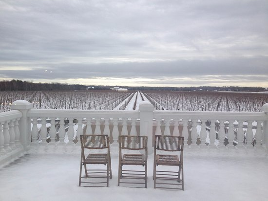 Peconic, État de New York : The Vineyard in the snow.
