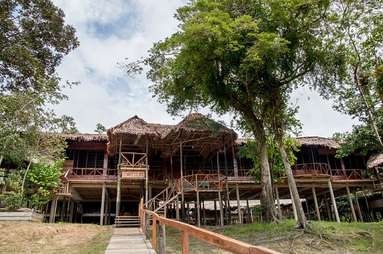 Amazonia Expeditions' Tahuayo Lodge: Tahauyo Lodge