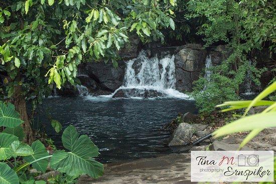 Michoacan, Mexico: Waterfalls at Kauar Tikuri