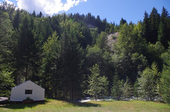 North Bend, Canadá: Glamping tent forest background