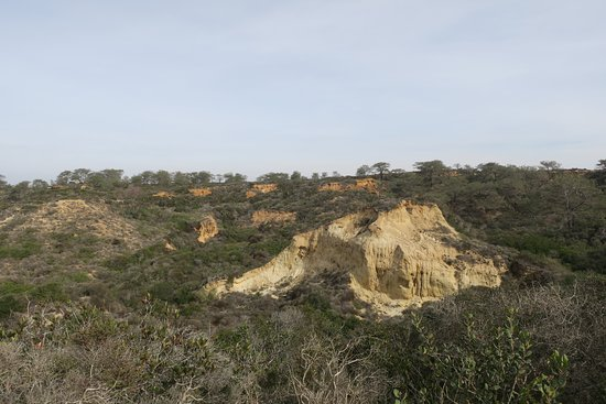Torrey Pines State Natural Reserve : Near the visitor center