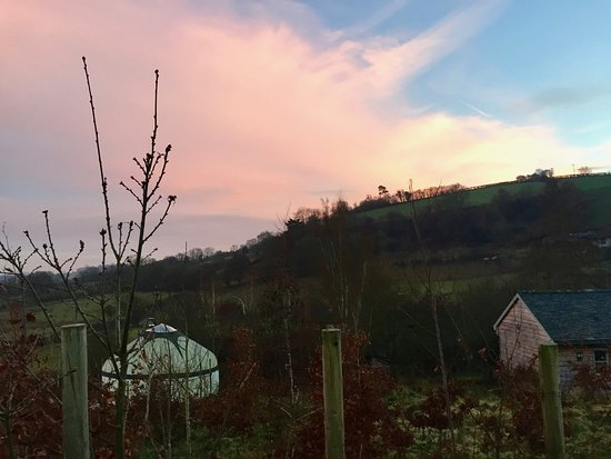 Dolanog, UK: View from Oak yurt decking