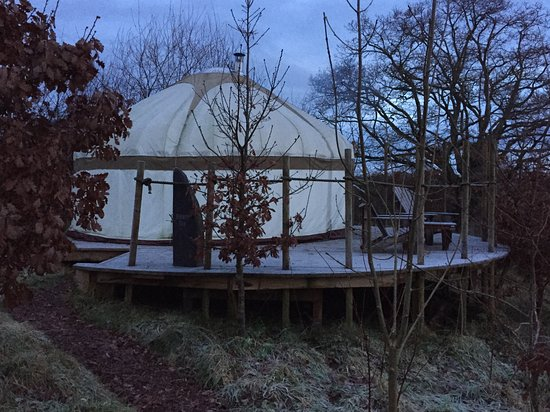 Dolanog, UK: Oak yurt