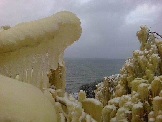 Kohtla, Estonia: Заросли льда на окрестных деревьях