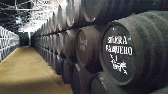 Montilla, España: Solera