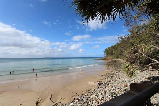 The Cove Noosa Resort: Perfect Little Cove beach just across the road