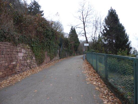 Philosophenweg: Road