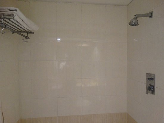 Hotel Laksh Residency: Close-up of the shower area