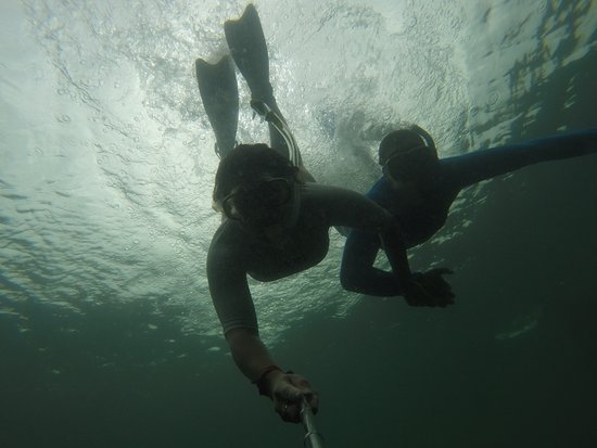 Puerto Villamil, Equador: Snorkeling