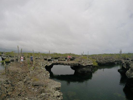 Puerto Villamil, Ecuador: Vista supoerior de Los Tuneles