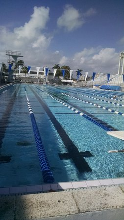 International Swimming Hall Of Fame Fort Lauderdale Fl Arvostelut