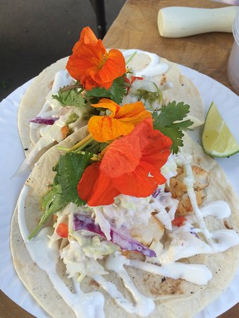 Black Rockfish Tacos from CS Fishery Manzanita Oregon  Farmers Market