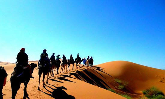 Morocco Travel Tour