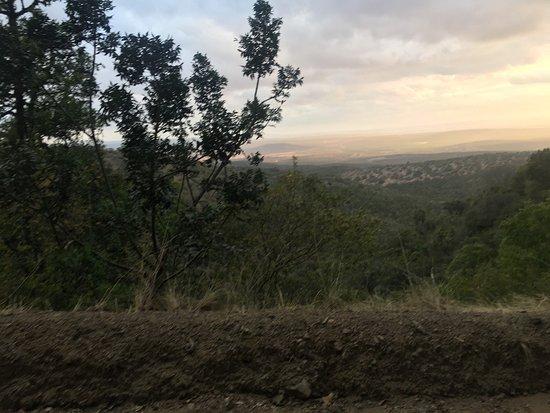 Addo, جنوب أفريقيا: photo2.jpg