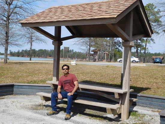 Elijah Clark State Park: At BBQ area