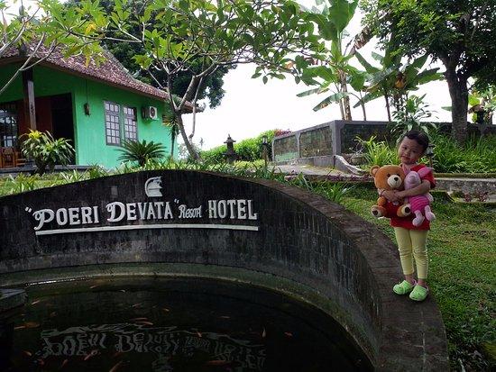 Poeri Devata Resort Hotel: Cottage bagian depan