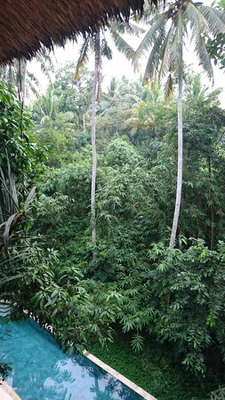 Shanti Toya Ashram Villas