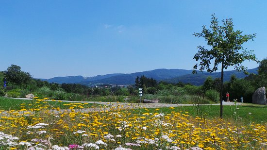 Lalling, Germany: Rundum Berge und Wälder - wie zum Schutz